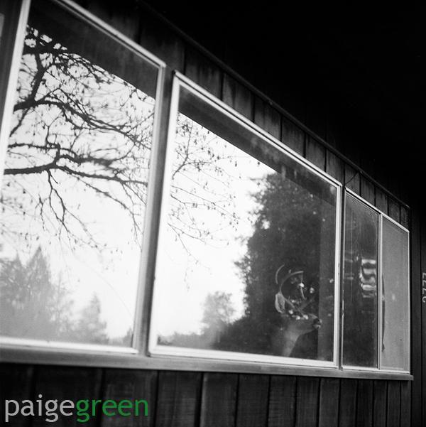 paigegreen-0208-_0006web1.jpg