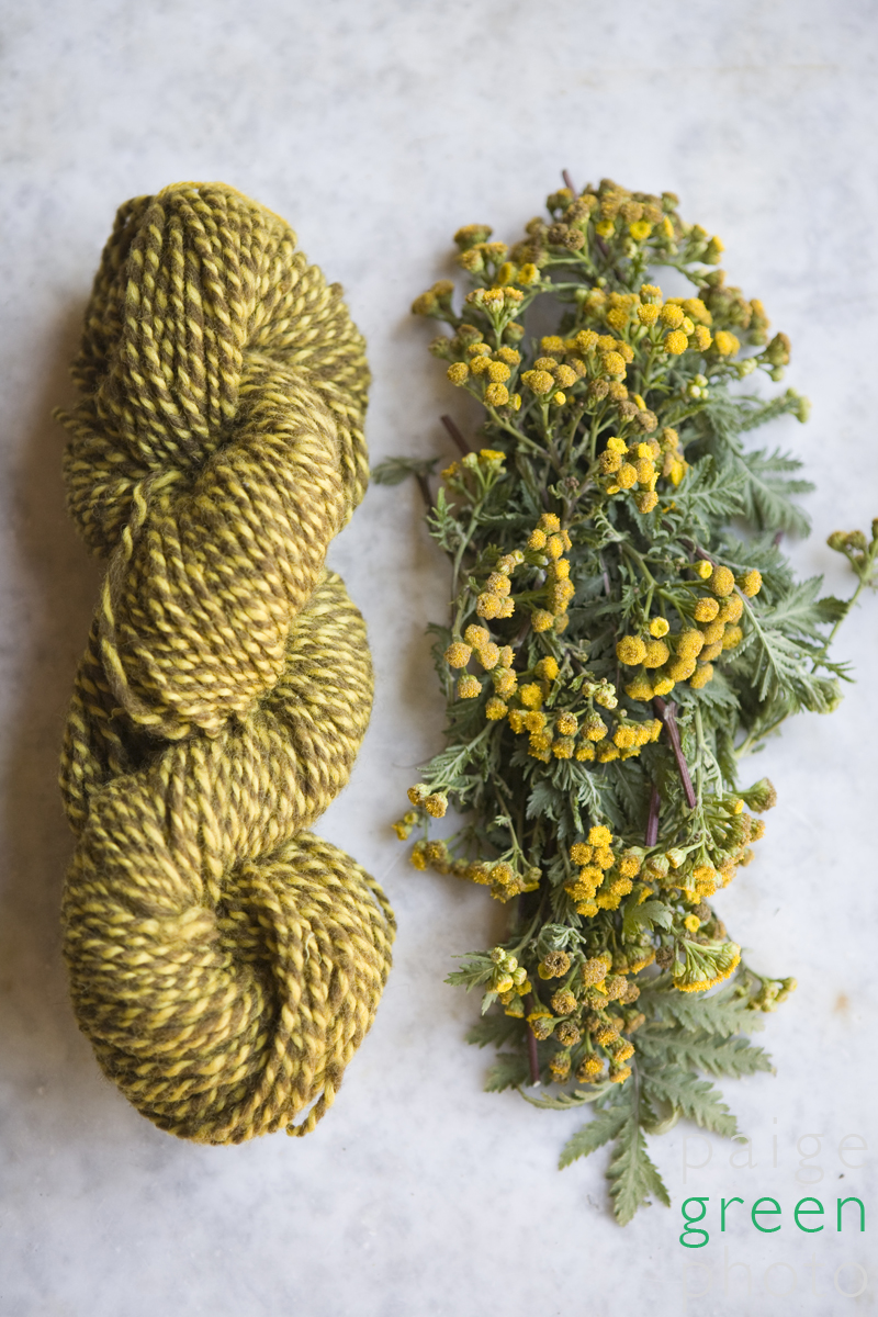 Can You Make A Natural Plant Dye Lightfast