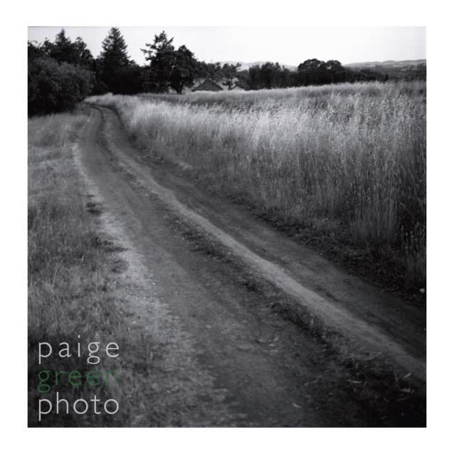 paigegreen-0010