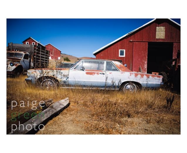 rusty-car_mg_4775-1