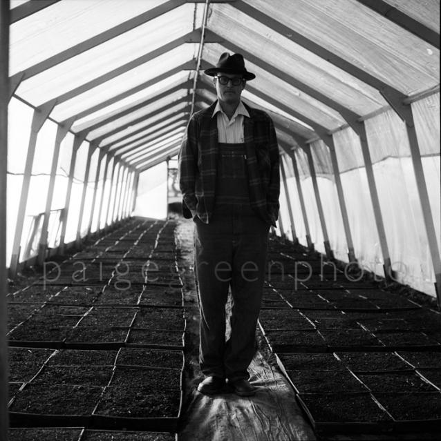 greenstringfarm-_0028